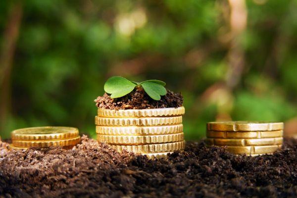 Земельный налог в Крыму: сколько будут платить крымчане?